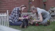 4K: Lesbian Couple Gardening In A Backyard. video