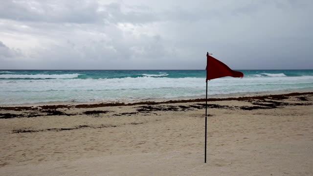 Lifeguard red flag on caribbean beach video