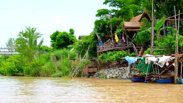 Lifestyle On Ayuthaya River , Thailand video