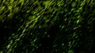 HD: light effect video