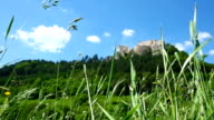 Light wind blowing in juicy green grass on near the Lietavsky hrad Castle in Slovakia. video