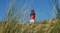 Lighthouse with reed video