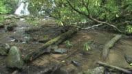Lil waterfall 135 - HD 30F video