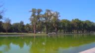 Lincoln Memorial Reflecting Pool video