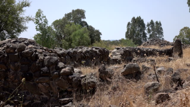 Lines of Stone Walls from Ancient City in Israel video