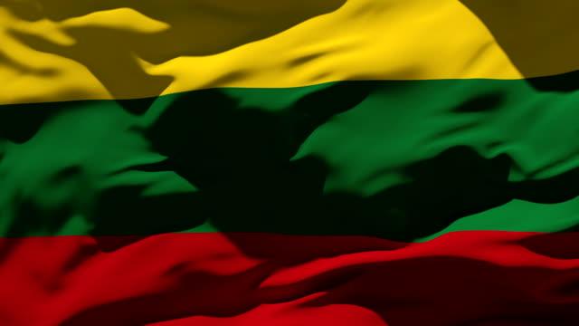 Lithuania Flag video