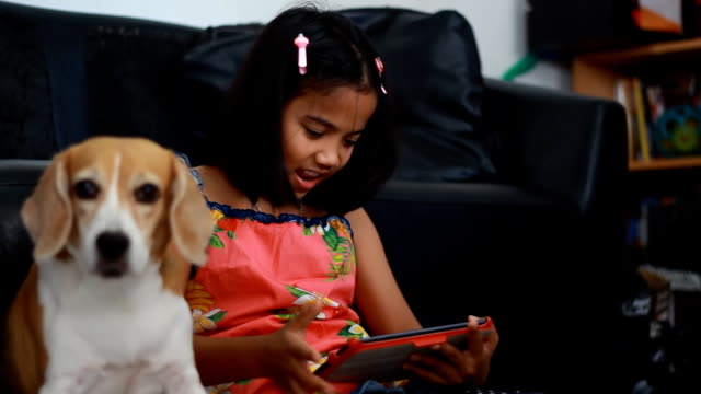 Little african girl using her tablet and her beagle dog looking on tablet video