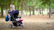 little baby lying in a stroller in park video