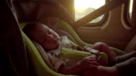 Little baby sleeping in safety carseat. video