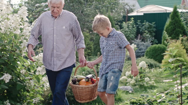 Little Boy and Elderly Man Carrying Basket with Harvest video