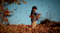 Little boy and flying leaves. video