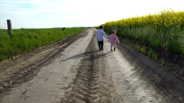 Little boy and girl are walking on path in field video