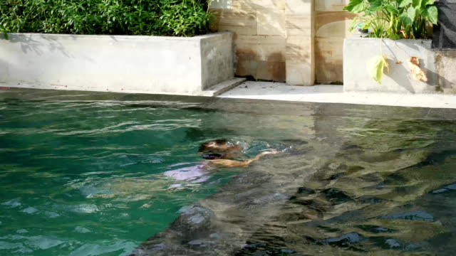 Little boy and girl swim underwater in swimming pool video
