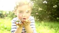 Little Boy Blowing Confetti Towards Camera video
