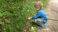 Little boy child plays with rod in rural outdoors video