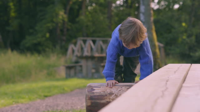 Little Boy Climbs on Picnic Table video
