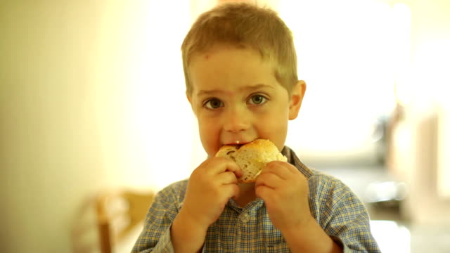 Little boy eating a slice of bread video