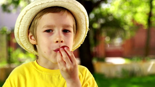 Little boy eating strawberry video