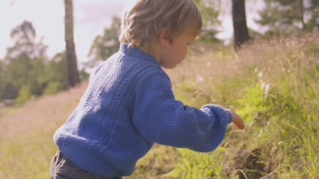 Little Boy Falls Down video