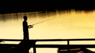 Little boy fishing on the lake video