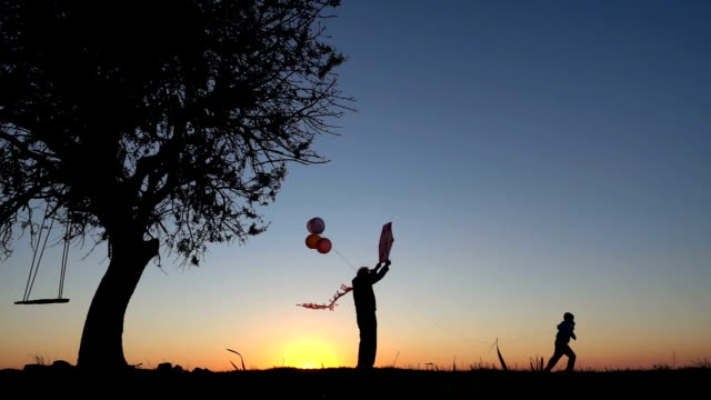 Little Boy Flying A Kite with Grandfather at Sunset video