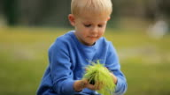 Little Boy Holding Green Grass video