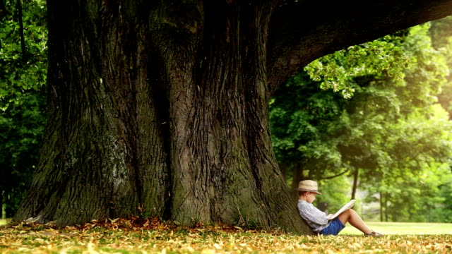 Little boy in a straw hat sits under the tree and reads a book magical time video