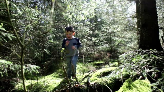 Little Boy In An Enchanted Wood video