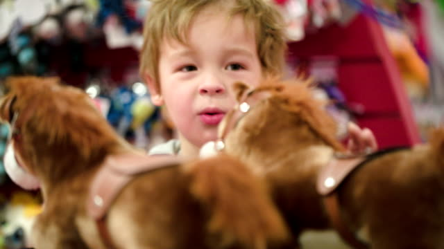 Little boy looking at the toy horses in shop video