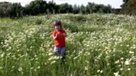 Little boy picking flowers video