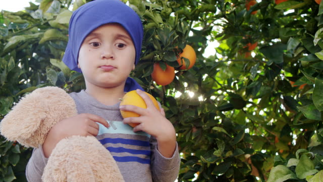Little Boy Picking Oranges video
