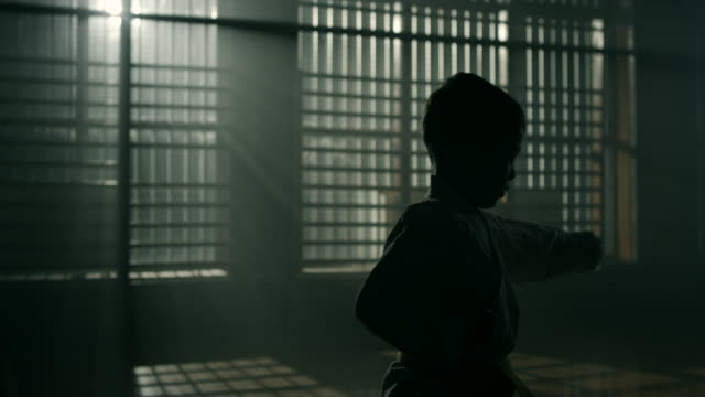 Little boy practicing martial arts video