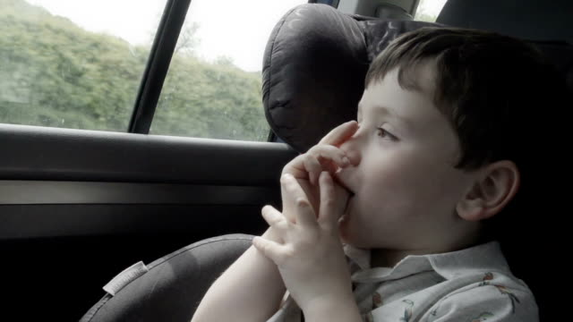 Little Boy Travelling In A Car video
