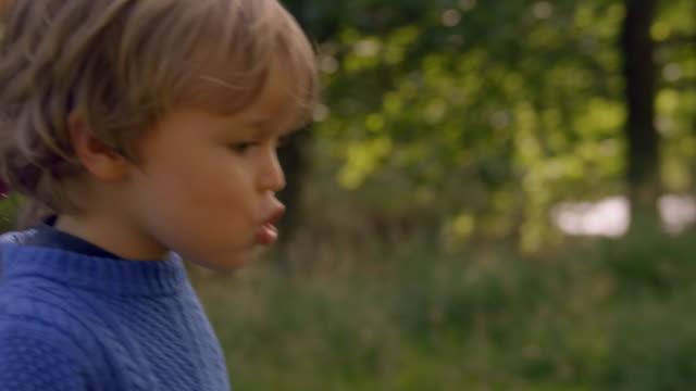 Little Boy Walks Down Path video