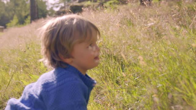 Little Boy Walks Through Meadow video