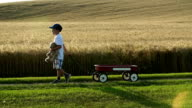 Little boy with a red wagon, country road video