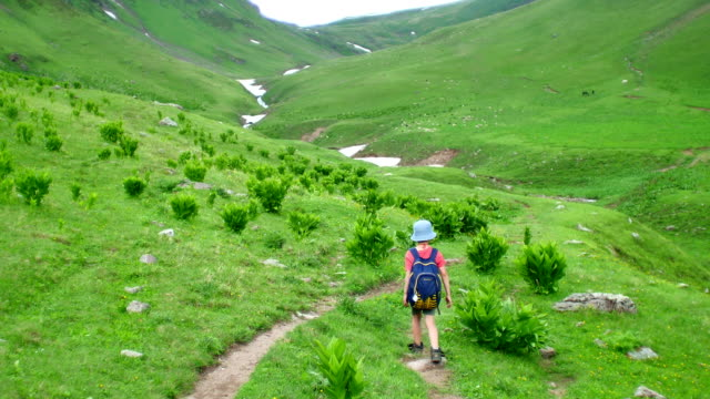 little boy with backpack hiking in scenic green mountains video