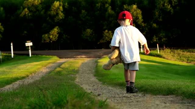 Little boy with teddy bear on country road. video