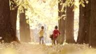 Little boys children running in the park video