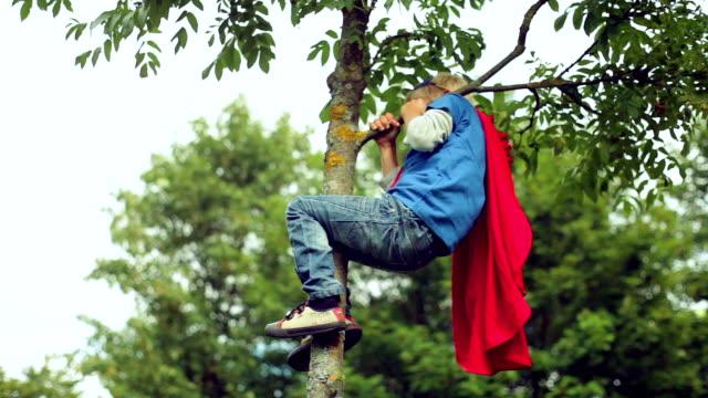 Little boy-superman climbs on a tree. video