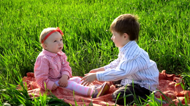 Little brother and sister are sitting on a blanket in the field video