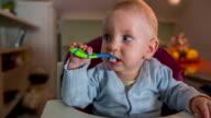 Little child brushing his teeth video