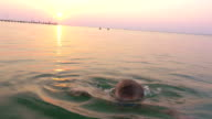 Little child in goggles having fun in sea during sundown video