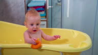 Little child playing with orange duck video