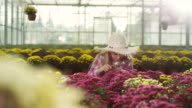 Little girl at greenhouse using magnifier video