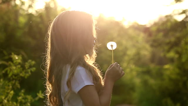 Little girl blow a dandelion video