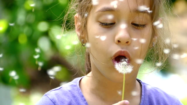 Little girl blowing dandelion and making a wish-slowmotion video