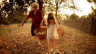 A Little Girl Helps her Grandmother, while Collecting Fallen Apples. Real People, Rural Scene,. Lens Flare, Unusual Angle, GoPro. video