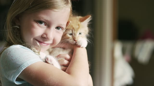 A little girl holding a kitten and smiling video