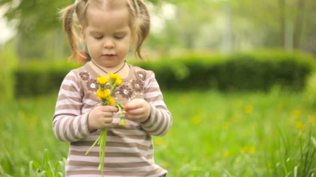 Little girl in green grass video